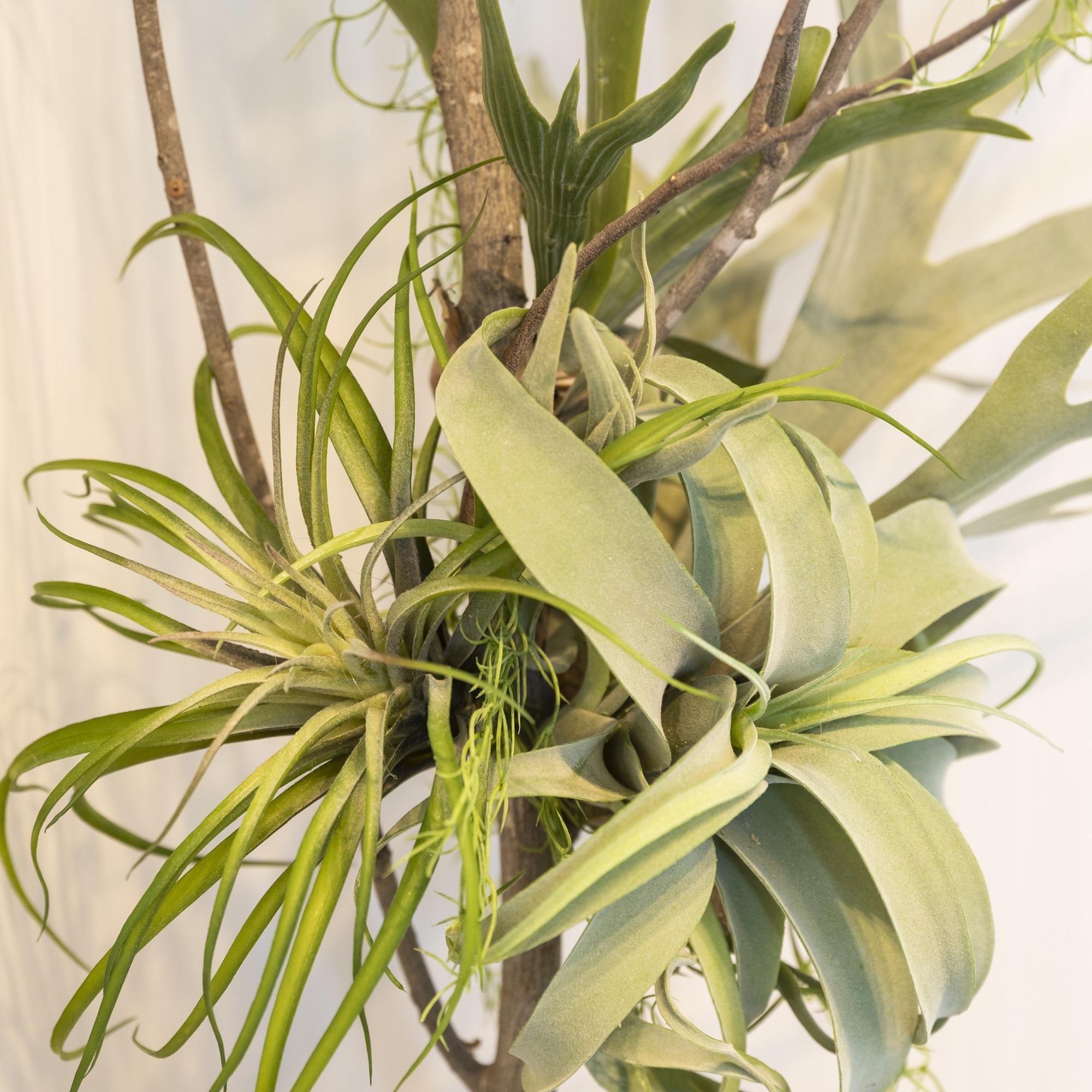 フェイクグリーン 観葉植物