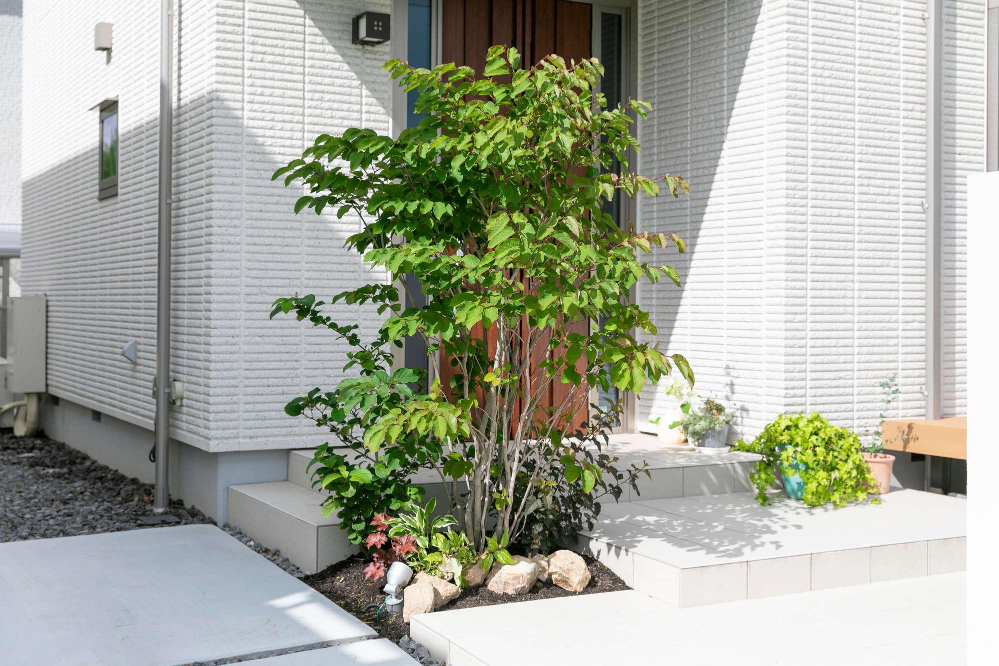 玄関ポーチ、植栽、目隠し、玄関、アプローチ、門周り